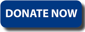 Donate_Now 2